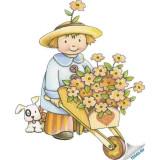 Несколько советов начинающему садоводу